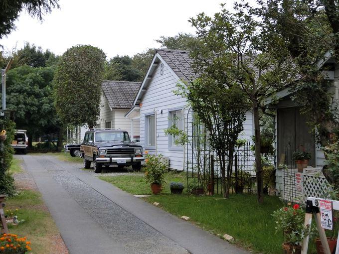 jonsontown (1).jpg