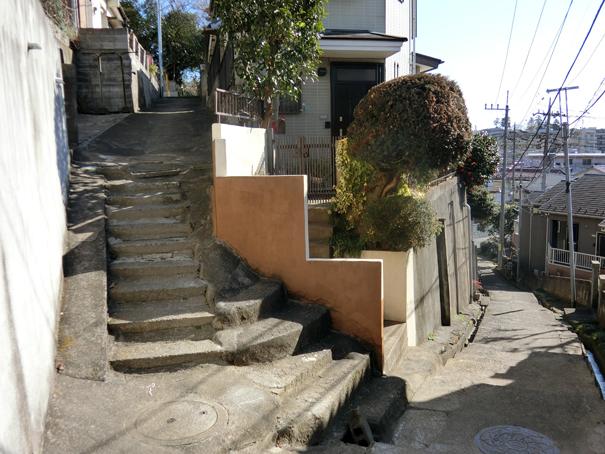 wako slope 2.jpg
