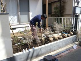 2008-4-13植栽blog1.jpg