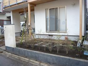 2008-4-13植栽blog3.jpg