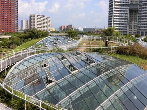 gringrin roof.jpg